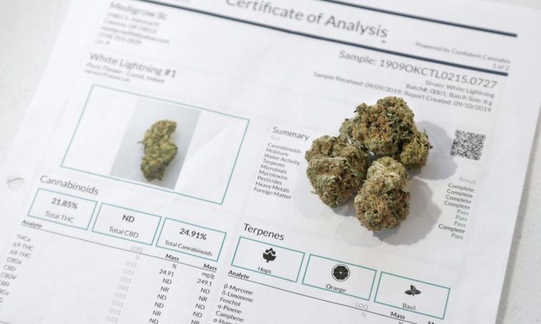 Cannabis lab accused of falsifying test results surrenders Oklahoma Medical Marijuana Authority license - Stephen Pingry, Tulsa World file