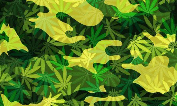 VA Continues To Oppose Marijuana Research Bill For Military Veterans Under Biden