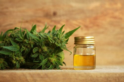 10 Things to Know about CBD Oil