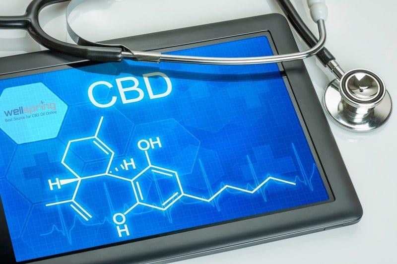 What is CBD Good For? WellspringCBD